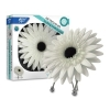 Bright Air Daisy Air Freshener 3.8 OZ - Citrus Scent