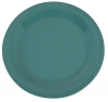 "Carlisle 10-1/2"" Sierrus™ Narrow Rim Dinner Plate - Meadow Green"