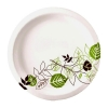 DIXIE Pathways Paper Plate -  6.875