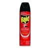 DIVERSEY Raid® Ant & Roach Killer - 17.5-oz.