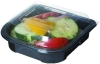 ECO BlueStripe™ Premium Take-Out Containers - Large