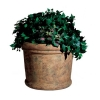 "RUBBERMAID Milan Planter - 30"" dia x 25""H"