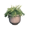 "RUBBERMAID Galleria Planter - 18""x12""x18"""
