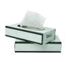 Wausau Baywest Facial Tissue - EcoSoft™